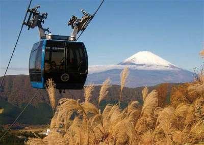 仙石原ススキの草原と箱根観光情報