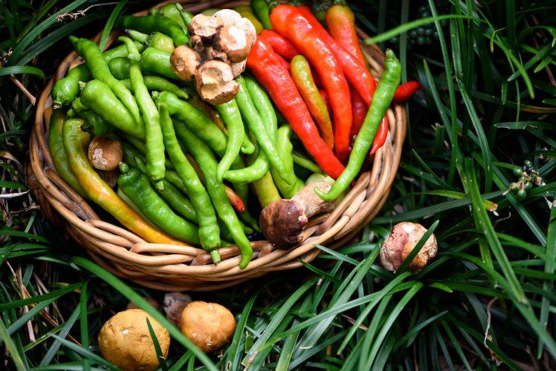 ミラドーの野菜