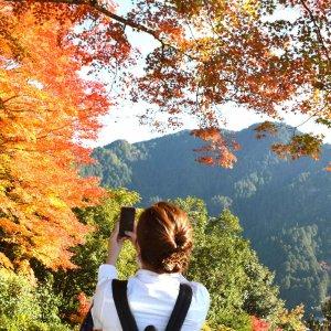 秋の女子旅プランのご案内